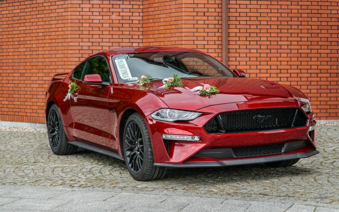 Mustang GT Performance Pack 2019